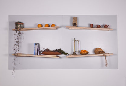 Rake Shelves PodMarket Apartment